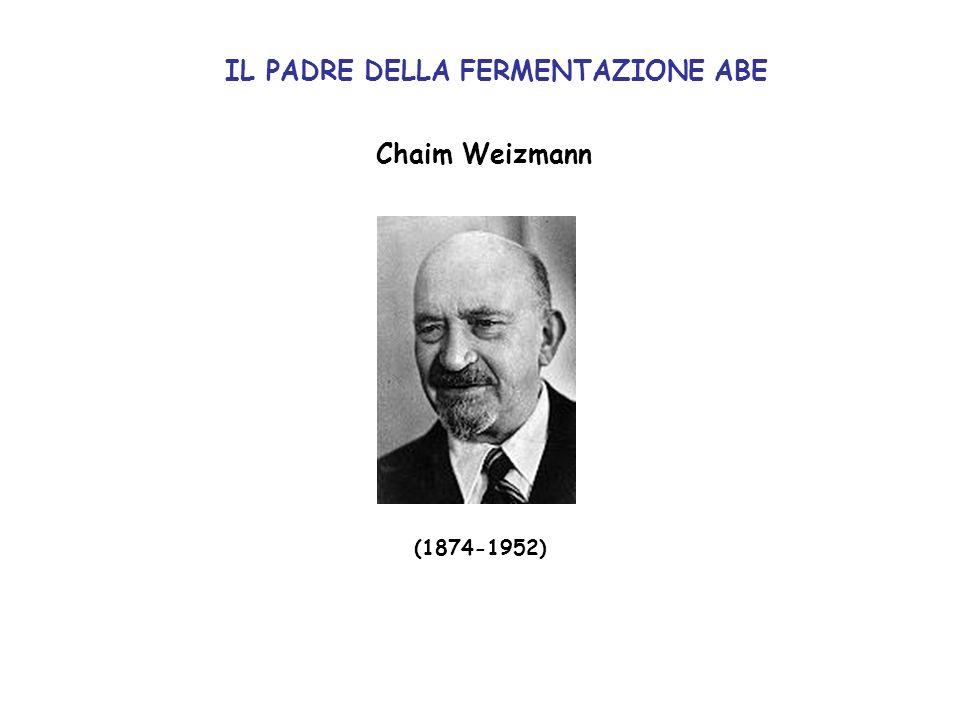 Chaim Weizmann (1874-1952) IL PADRE DELLA FERMENTAZIONE ABE