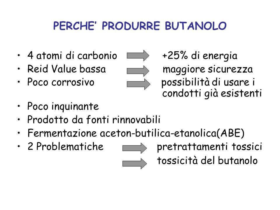 PERCHE PRODURRE BUTANOLO 4 atomi di carbonio +25% di energia Reid Value bassa maggiore sicurezza Poco corrosivo possibilità di usare i condotti già es