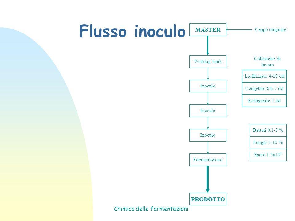 Chimica delle fermentazioni Flusso inoculo MASTER Working bank Inoculo Fermentazione PRODOTTO Ceppo originale Collezione di lavoro Batteri 0.1-3 % Fun