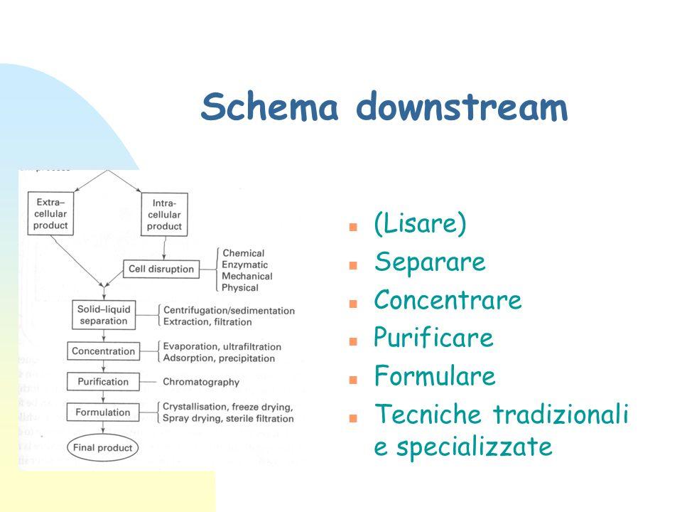 Schema downstream n (Lisare) n Separare n Concentrare n Purificare n Formulare n Tecniche tradizionali e specializzate