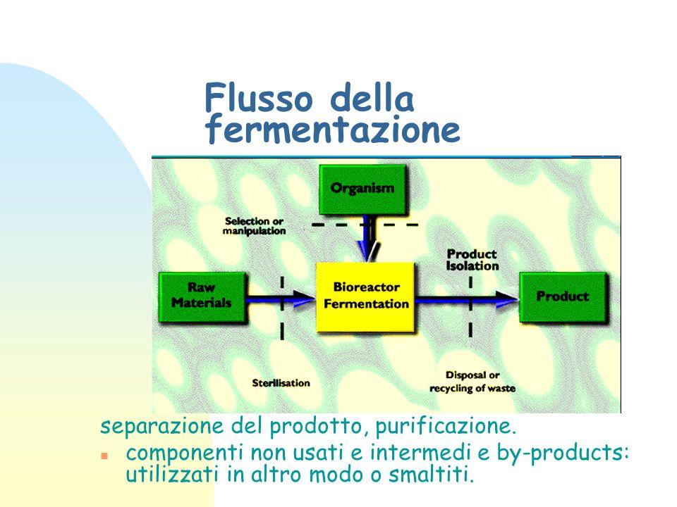 Flusso della fermentazione separazione del prodotto, purificazione. n componenti non usati e intermedi e by-products: utilizzati in altro modo o smalt