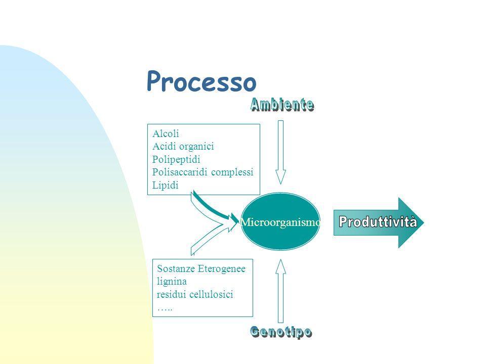 Processo Microorganismo Alcoli Acidi organici Polipeptidi Polisaccaridi complessi Lipidi Sostanze Eterogenee lignina residui cellulosici …..