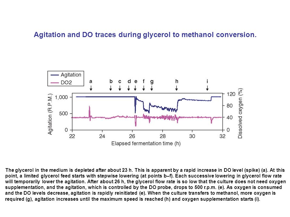 Agitation and DO traces during glycerol to methanol conversion.