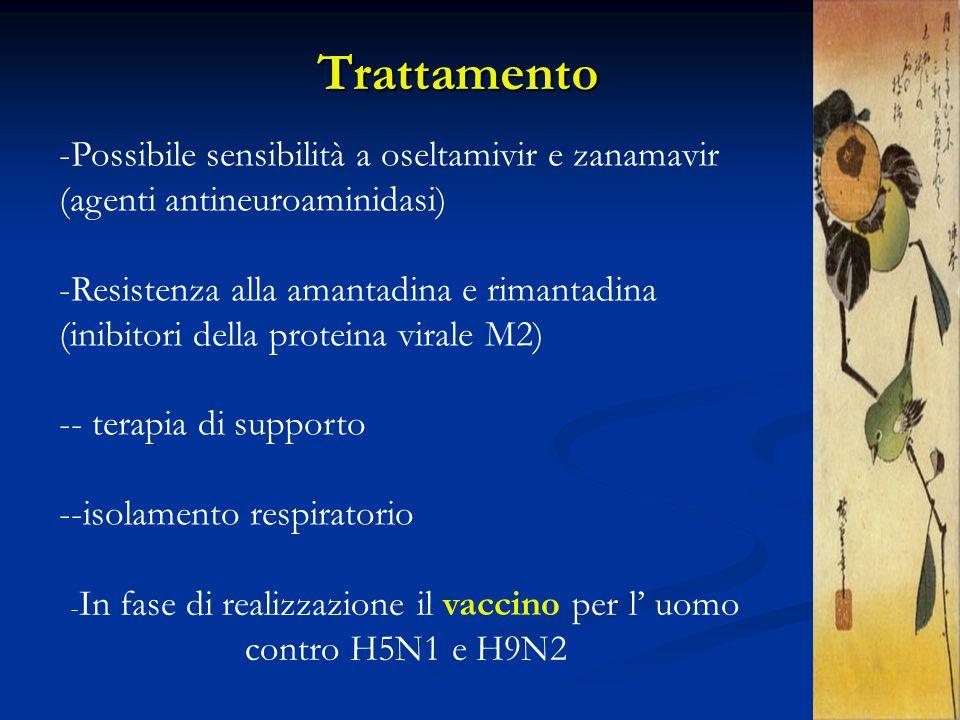 Trattamento -Possibile sensibilità a oseltamivir e zanamavir (agenti antineuroaminidasi) -Resistenza alla amantadina e rimantadina (inibitori della pr