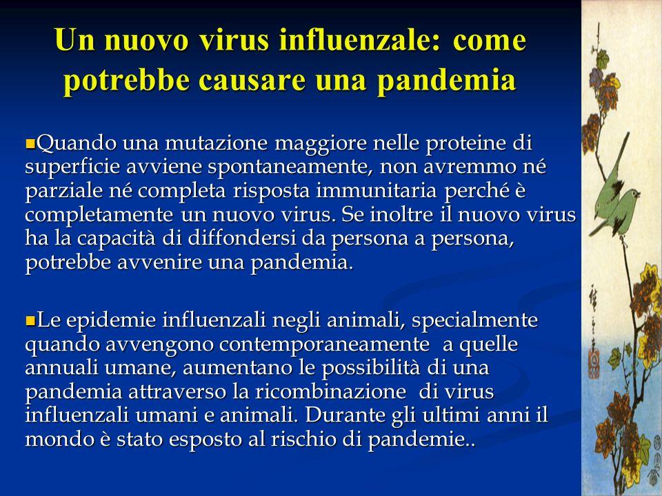 Un nuovo virus influenzale: come potrebbe causare una pandemia Quando una mutazione maggiore nelle proteine di superficie avviene spontaneamente, non