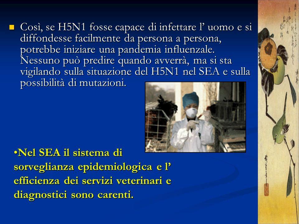 Nel SEA il sistema di sorveglianza epidemiologica e l efficienza dei servizi veterinari e diagnostici sono carenti.Nel SEA il sistema di sorveglianza