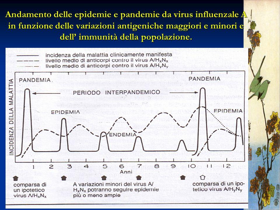 Nel SEA il sistema di sorveglianza epidemiologica e l efficienza dei servizi veterinari e diagnostici sono carenti.Nel SEA il sistema di sorveglianza epidemiologica e l efficienza dei servizi veterinari e diagnostici sono carenti.