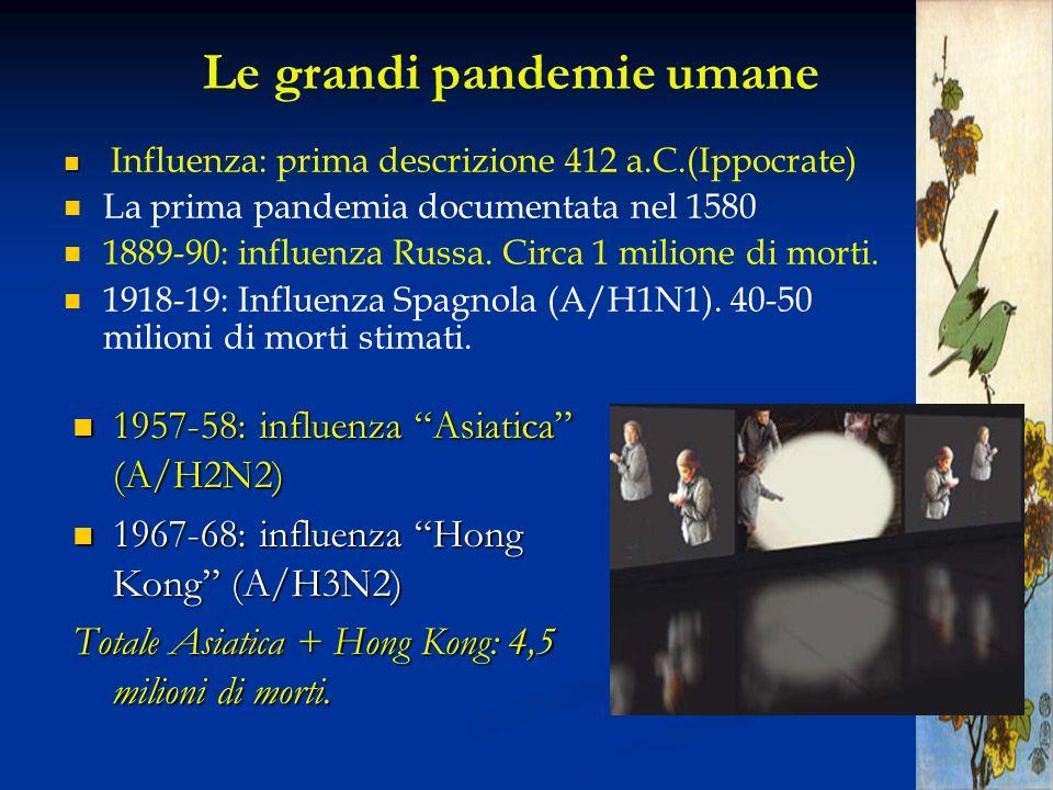 Le grandi pandemie umane Influenza: prima descrizione 412 a.C.(Ippocrate) La prima pandemia documentata nel 1580 1889-90: influenza Russa. Circa 1 mil