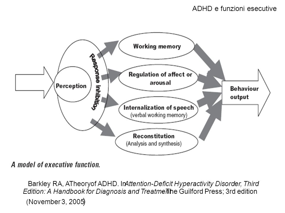 ADHD e funzioni esecutive Barkley RA, ATheory of ADHD. InAttention-Deficit Hyperactivity Disorder, Third Edition: A Handbook for Diagnosis and Treatme