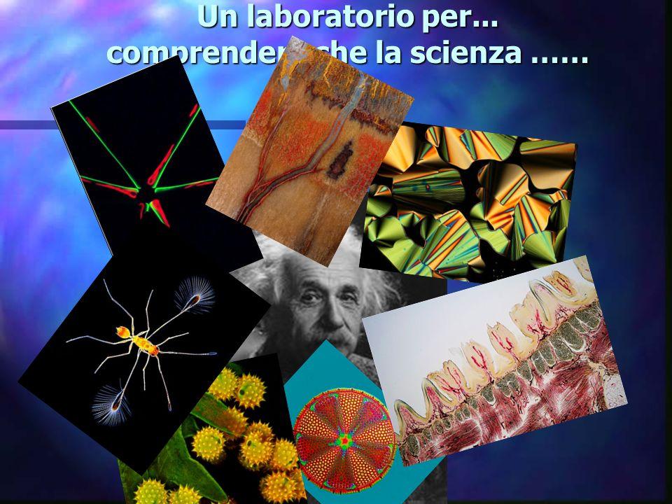Un laboratorio….