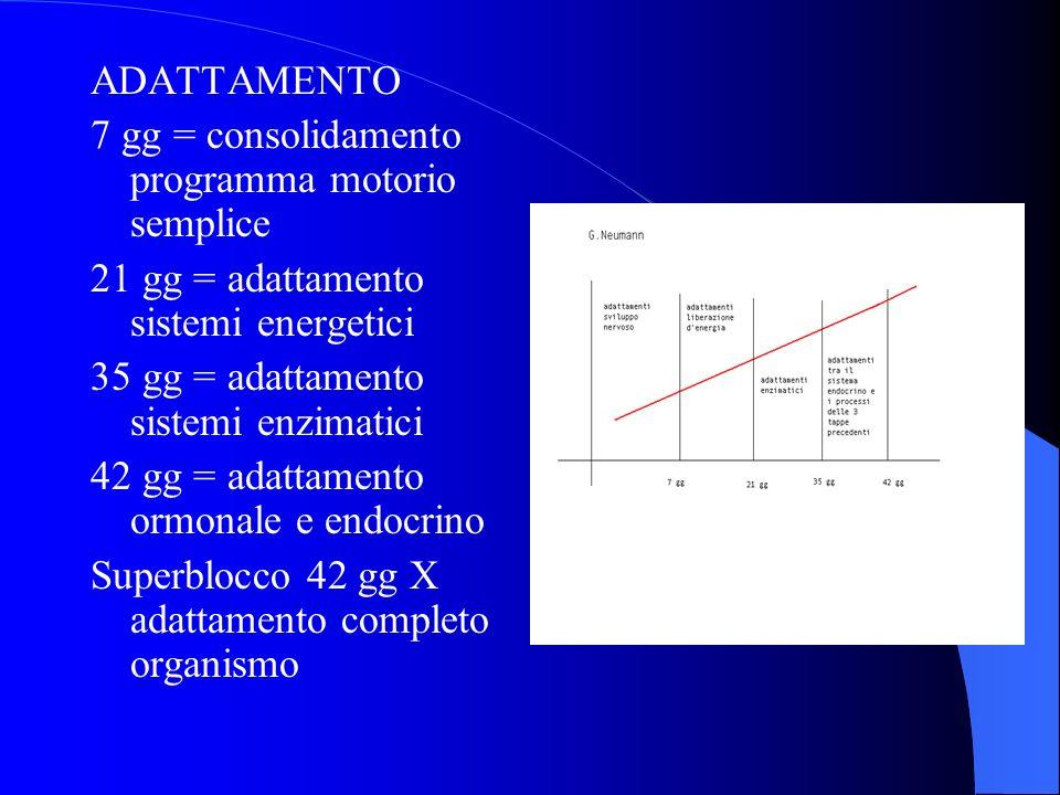 ADATTAMENTO 7 gg = consolidamento programma motorio semplice 21 gg = adattamento sistemi energetici 35 gg = adattamento sistemi enzimatici 42 gg = ada