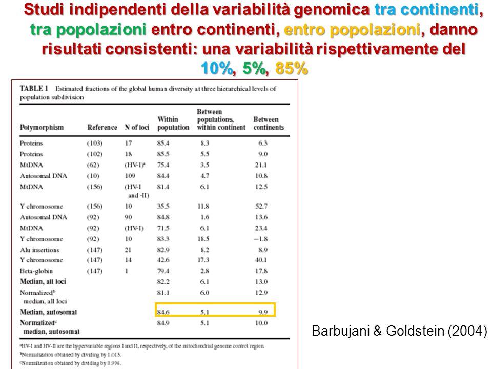 Studi indipendenti della variabilità genomica tra continenti, tra popolazioni entro continenti, entro popolazioni, danno risultati consistenti: una variabilità rispettivamente del 10%, 5%, 85% Barbujani & Goldstein (2004)