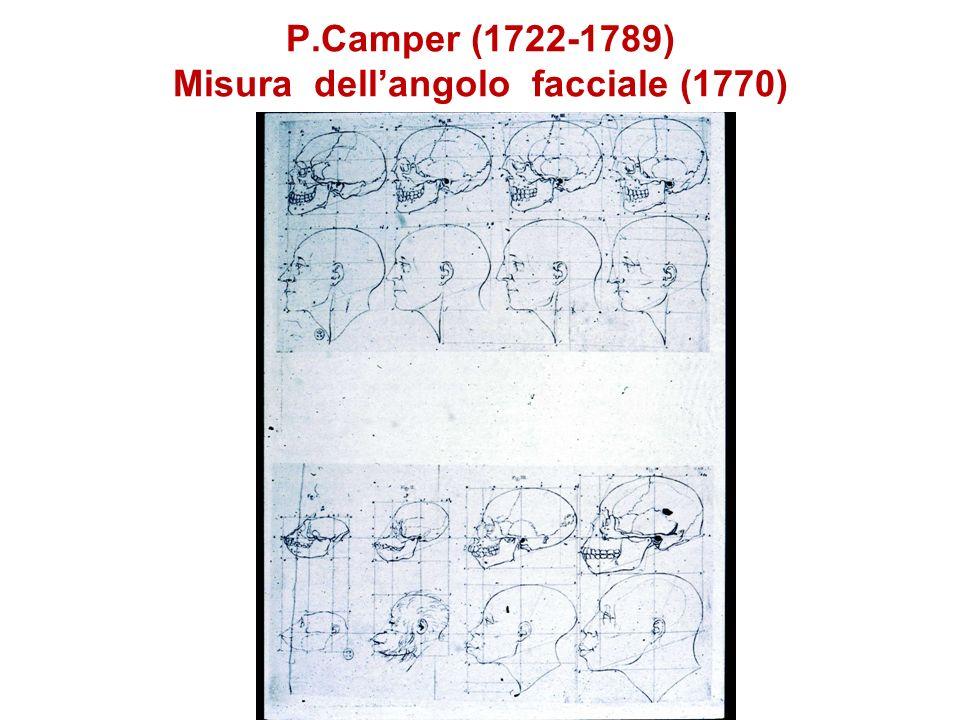 Poloni et al. (1997) Am. J. Hum. Genet. 61: 1015-1035