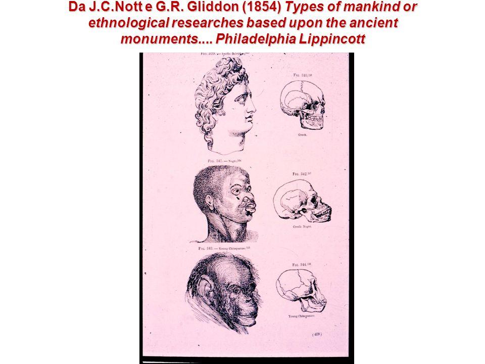 Distribuzione geografica delle varie intensità del colore della pelle Distribuzione geografica delle varie intensità del colore della pelle (da R.