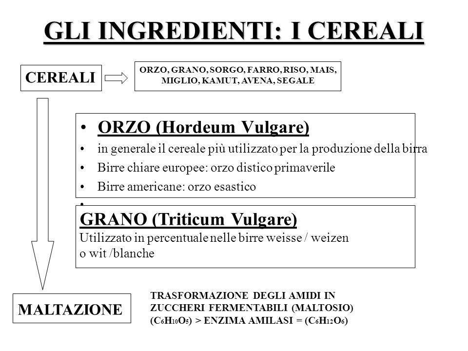 GLI INGREDIENTI: I CEREALI ORZO (Hordeum Vulgare) in generale il cereale più utilizzato per la produzione della birra Birre chiare europee: orzo disti