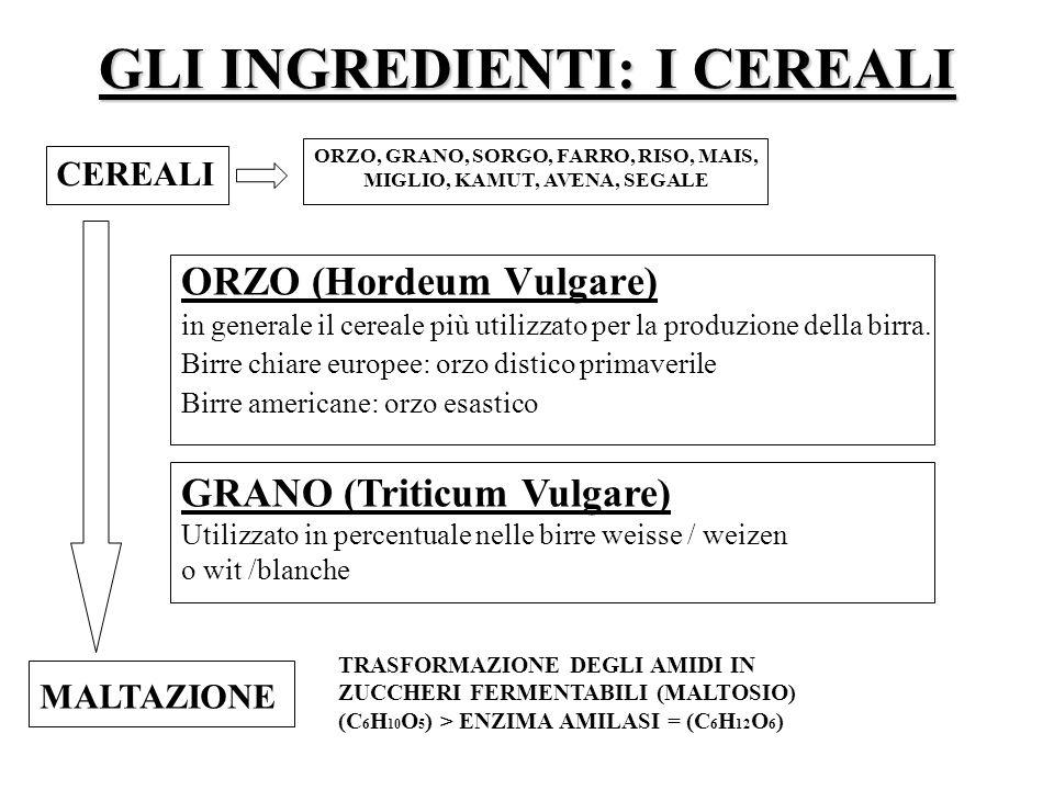 GLI INGREDIENTI: I CEREALI ORZO (Hordeum Vulgare) in generale il cereale più utilizzato per la produzione della birra. Birre chiare europee: orzo dist