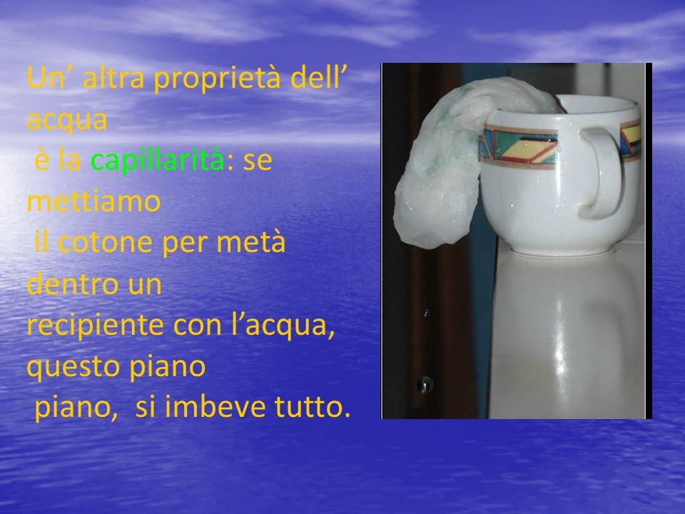 Un altra proprietà dell acqua è la capillarità: se mettiamo il cotone per metà dentro un recipiente con lacqua, questo piano piano, si imbeve tutto.