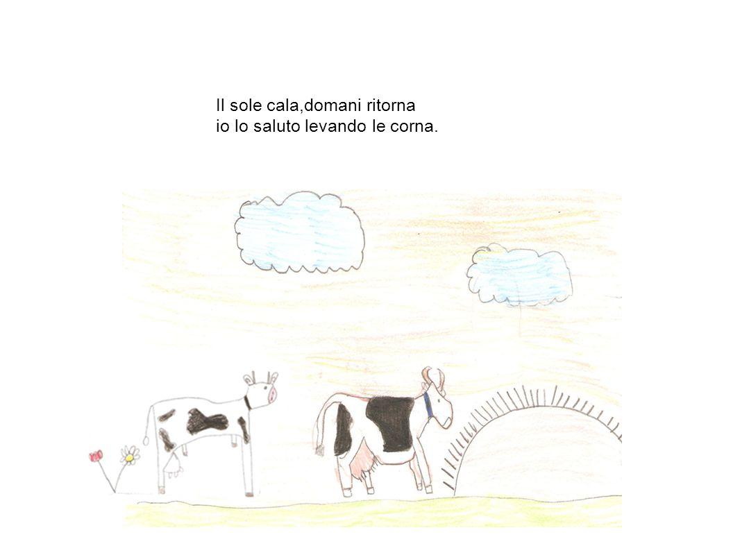 Sono la mucca, sono la vacca faccio con calma perfino la cacca