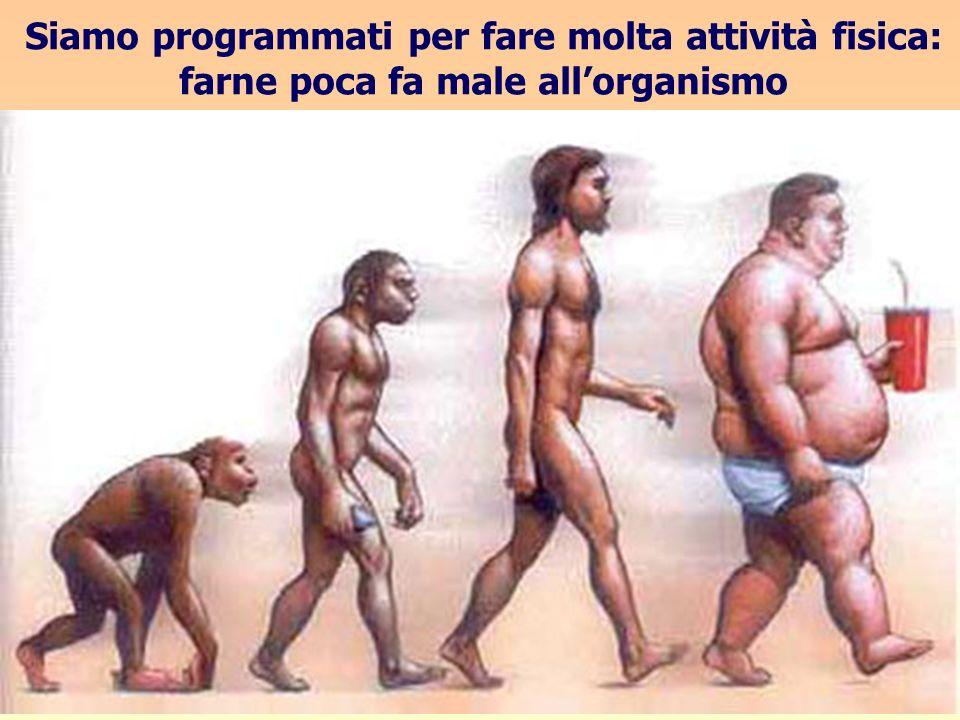 Siamo programmati per fare molta attività fisica: farne poca fa male allorganismo