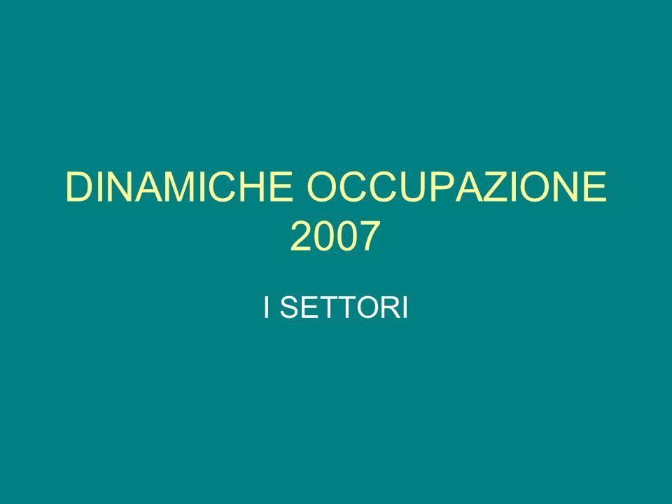 DINAMICHE OCCUPAZIONE 2007 I SETTORI