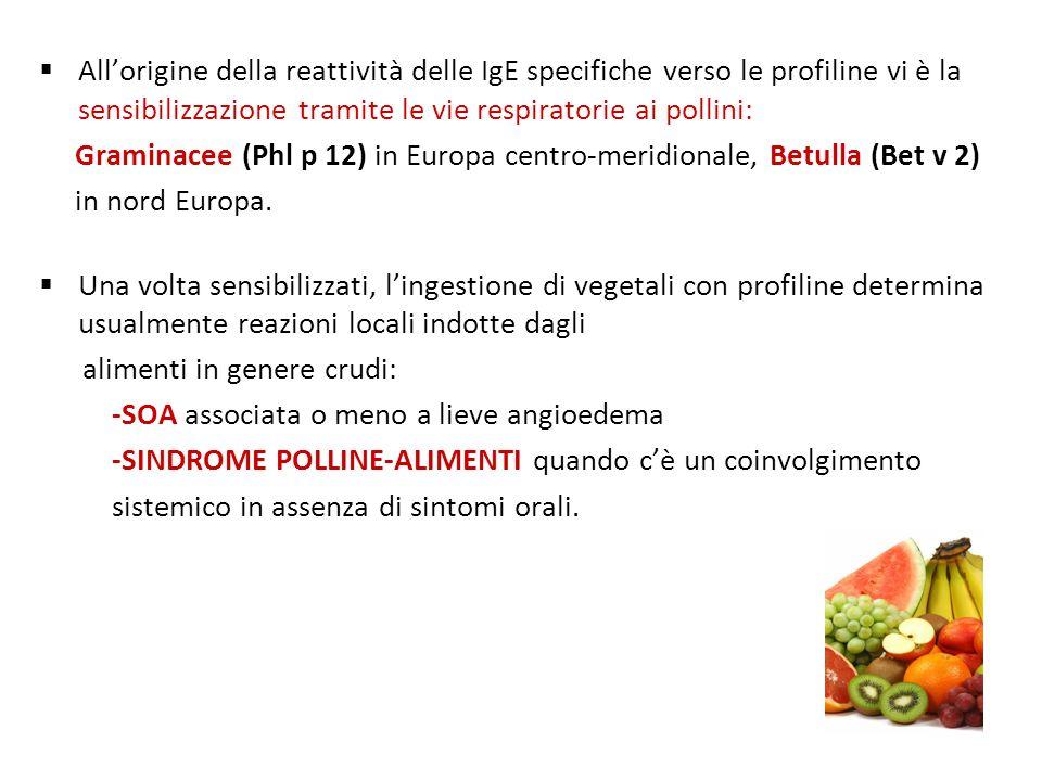 Allorigine della reattività delle IgE specifiche verso le profiline vi è la sensibilizzazione tramite le vie respiratorie ai pollini: Graminacee (Phl