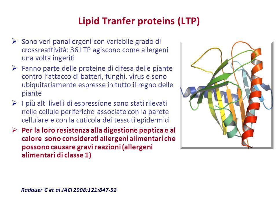 Lipid Tranfer proteins (LTP) Sono veri panallergeni con variabile grado di crossreattività: 36 LTP agiscono come allergeni una volta ingeriti Fanno pa
