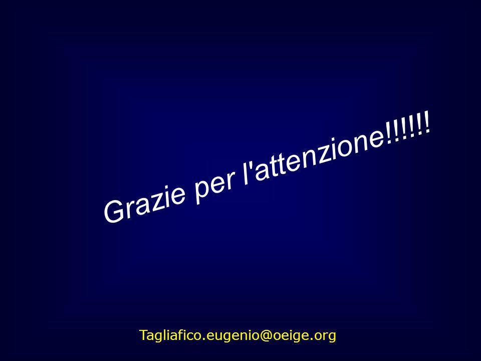 Grazie per l'attenzione!!!!!! Tagliafico.eugenio@oeige.org