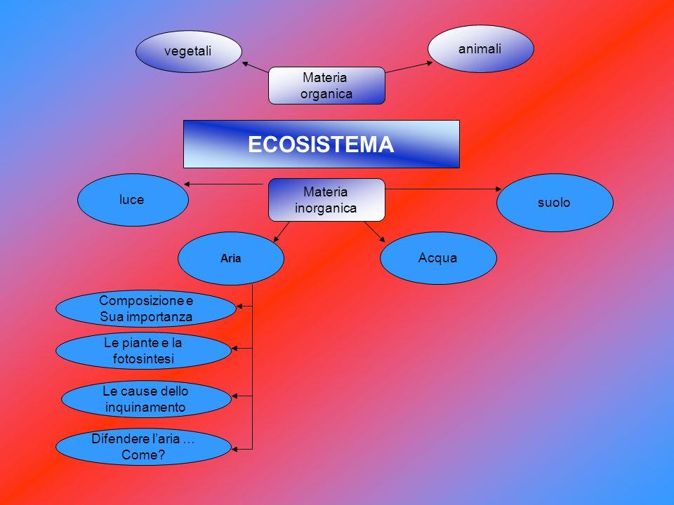 ECOSISTEMA vegetali Acqua Materia inorganica Materia organica animali Aria suolo luce Composizione e Sua importanza Le piante e la fotosintesi Le caus
