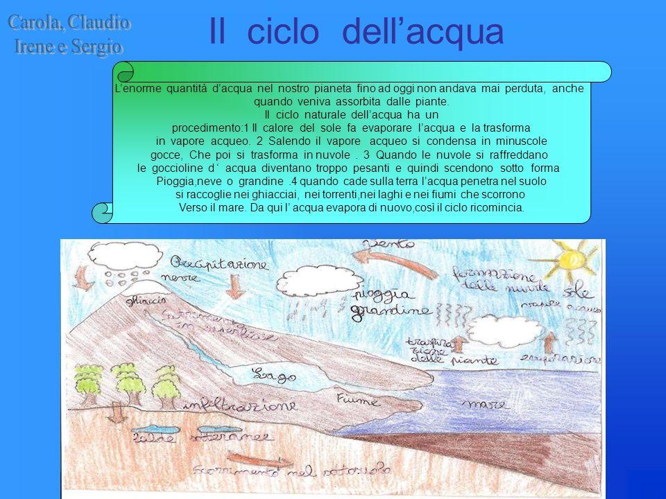 Il ciclo dellacqua Lenorme quantità dacqua nel nostro pianeta fino ad oggi non andava mai perduta, anche quando veniva assorbita dalle piante. Il cicl