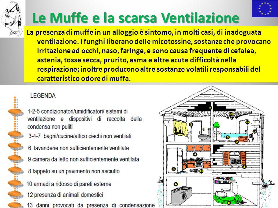 Le Muffe e la scarsa Ventilazione La presenza di muffe in un alloggio è sintomo, in molti casi, di inadeguata ventilazione. I funghi liberano delle mi
