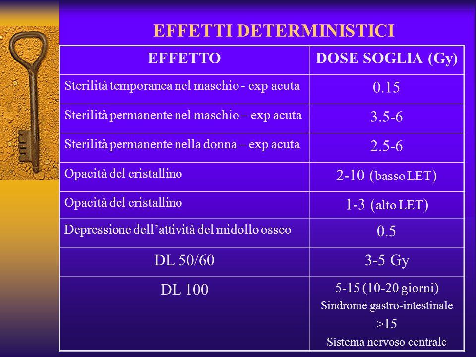 EFFETTI DETERMINISTICI EFFETTODOSE SOGLIA (Gy) Sterilità temporanea nel maschio - exp acuta 0.15 Sterilità permanente nel maschio – exp acuta 3.5-6 Sterilità permanente nella donna – exp acuta 2.5-6 Opacità del cristallino 2-10 ( basso LET ) Opacità del cristallino 1-3 ( alto LET ) Depressione dellattività del midollo osseo 0.5 DL 50/603-5 Gy DL 100 5-15 (10-20 giorni) Sindrome gastro-intestinale >15 Sistema nervoso centrale