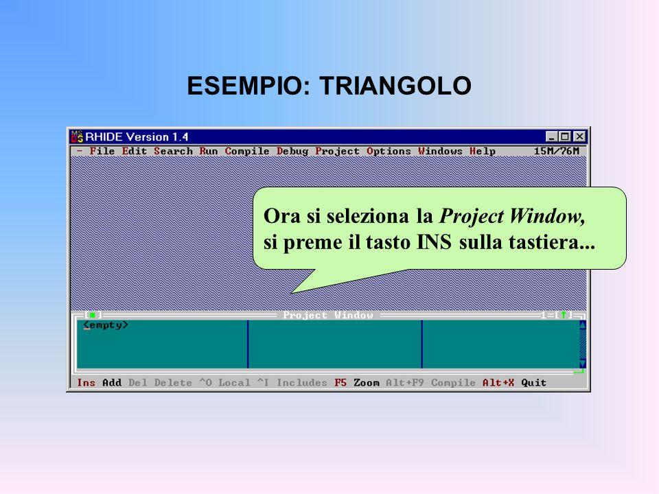 ESEMPIO: TRIANGOLO Ora si seleziona la Project Window, si preme il tasto INS sulla tastiera...
