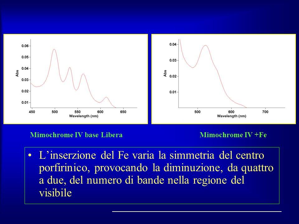 Linserzione del Fe varia la simmetria del centro porfirinico, provocando la diminuzione, da quattro a due, del numero di bande nella regione del visib