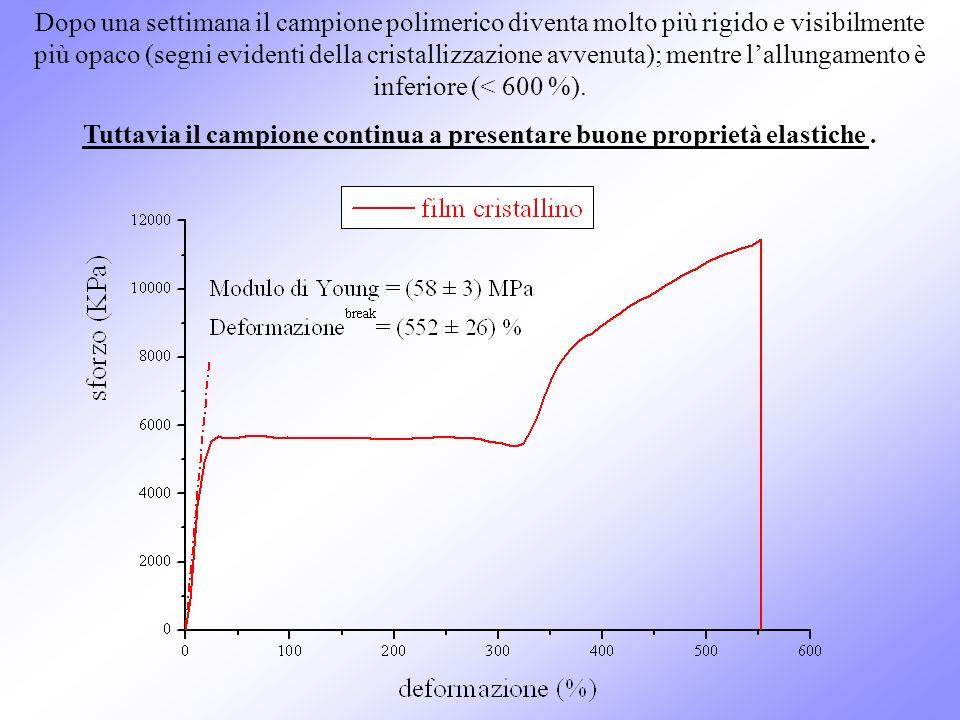 Dopo una settimana il campione polimerico diventa molto più rigido e visibilmente più opaco (segni evidenti della cristallizzazione avvenuta); mentre