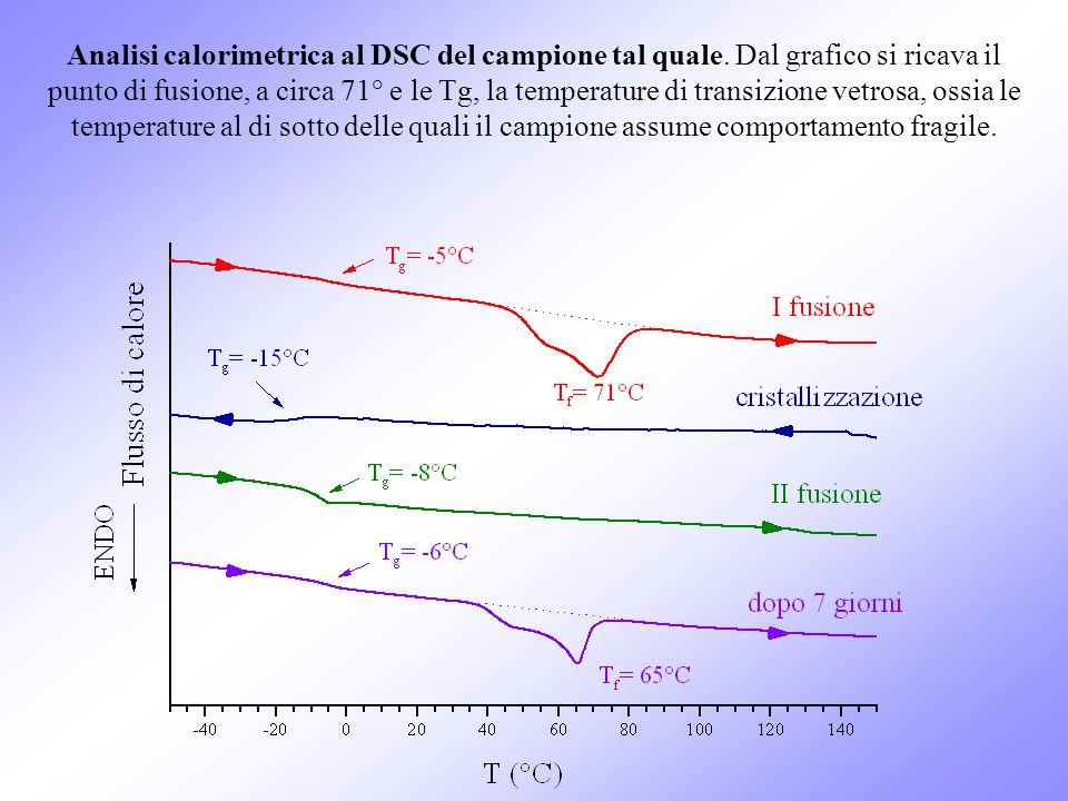 Analisi calorimetrica al DSC del campione tal quale. Dal grafico si ricava il punto di fusione, a circa 71° e le Tg, la temperature di transizione vet