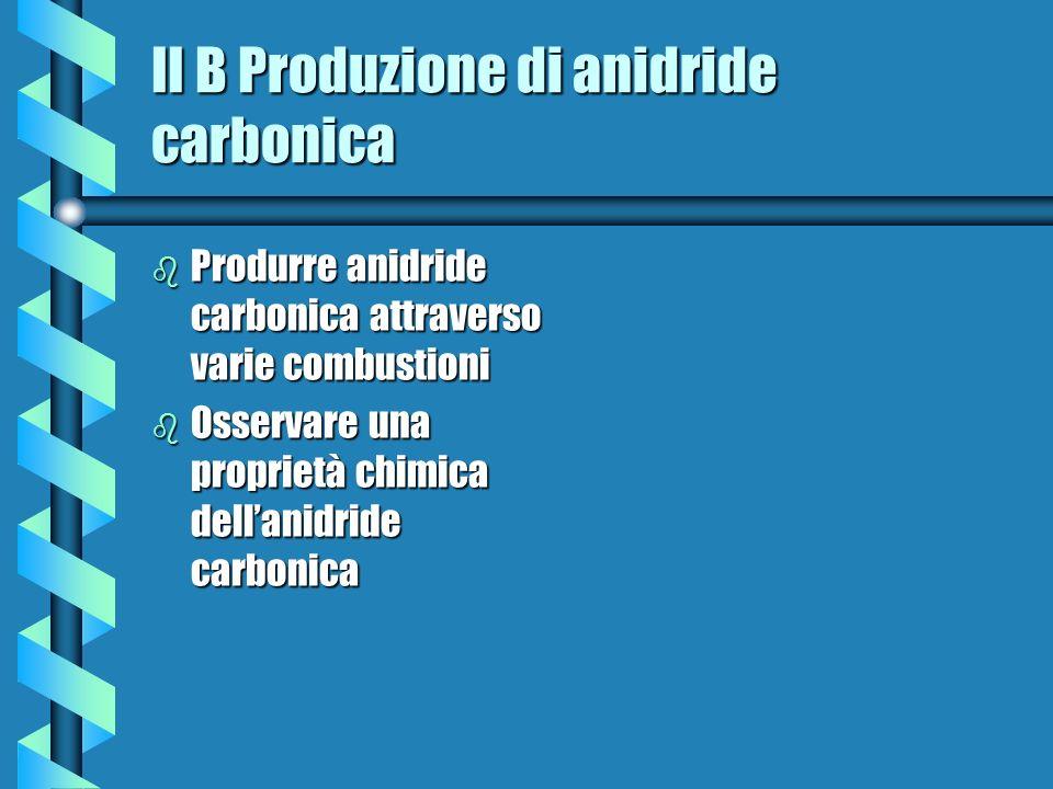II B Produzione di anidride carbonica b Produrre anidride carbonica attraverso varie combustioni b Osservare una proprietà chimica dellanidride carbon