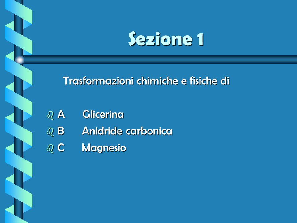 Sezione 1 Trasformazioni chimiche e fisiche di b A Glicerina b B Anidride carbonica b C Magnesio