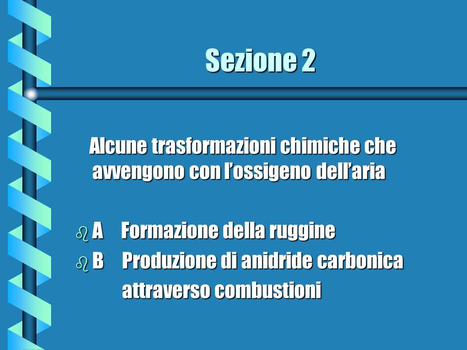 Sezione 2 Alcune trasformazioni chimiche che avvengono con lossigeno dellaria Alcune trasformazioni chimiche che avvengono con lossigeno dellaria b A