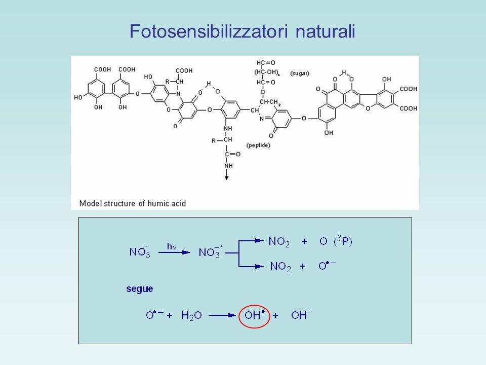 L amlodipina: calcio antagonista usato nel trattamento ipertensivo In campioni di acque superficiali: > 71 ng/l