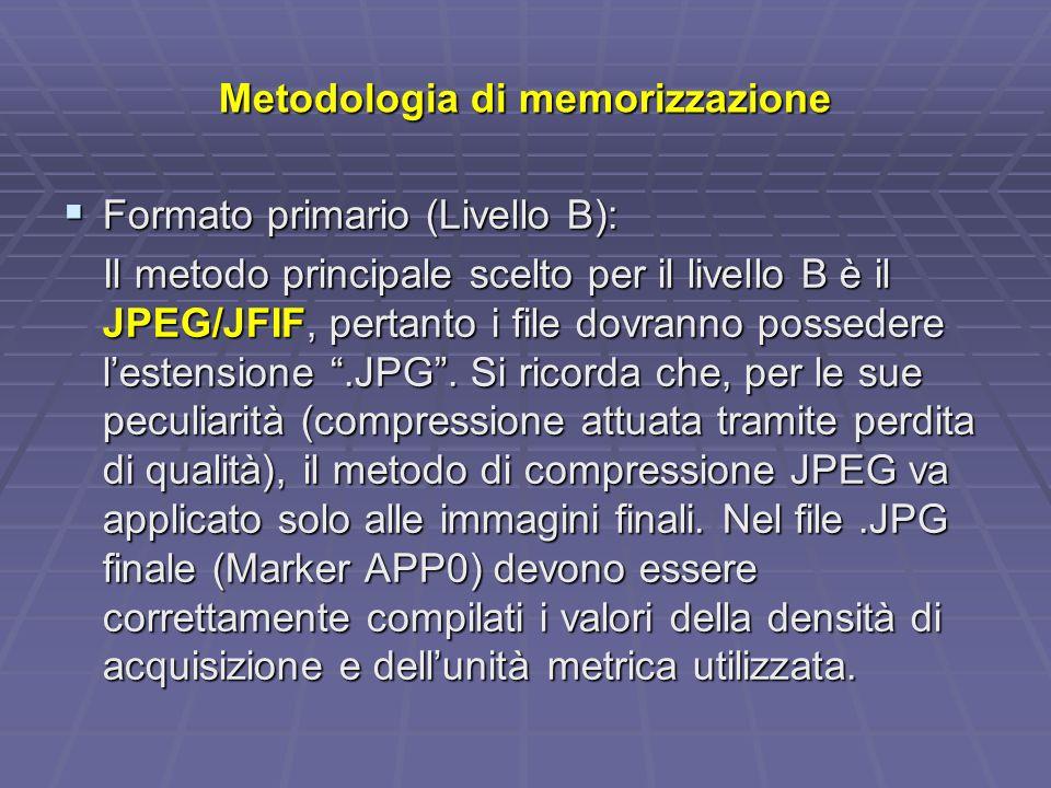Metodologia di memorizzazione Formato primario (Livello B): Formato primario (Livello B): Il metodo principale scelto per il livello B è il JPEG/JFIF, pertanto i file dovranno possedere lestensione.JPG.