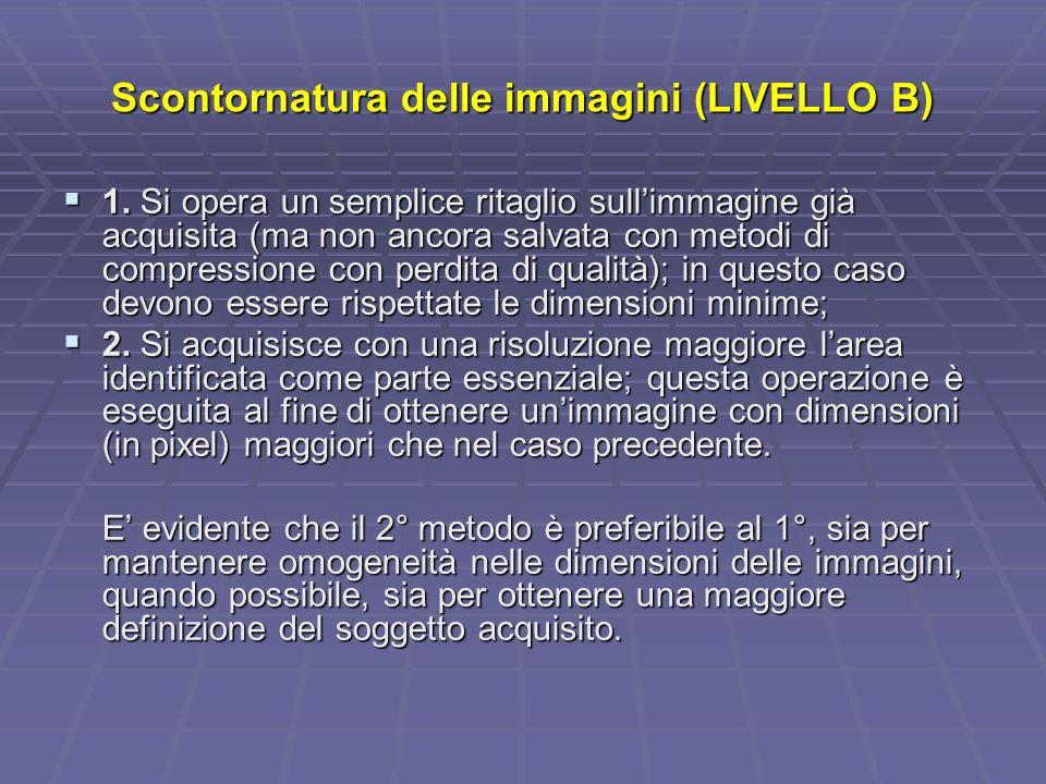 Scontornatura delle immagini (LIVELLO B) 1.