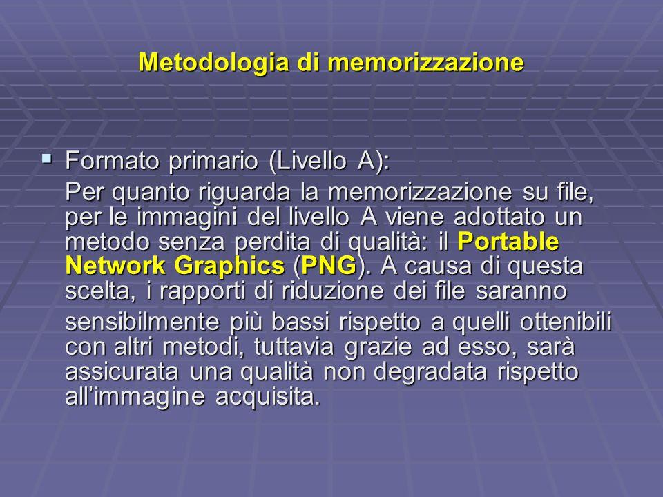 Metodologia di memorizzazione Formato primario (Livello A): Formato primario (Livello A): Per quanto riguarda la memorizzazione su file, per le immagini del livello A viene adottato un metodo senza perdita di qualità: il Portable Network Graphics (PNG).
