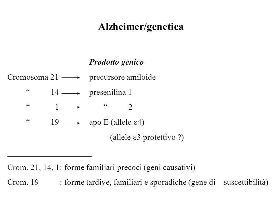 Alzheimer/genetica Prodotto genico Cromosoma 21precursore amiloide 14presenilina 1 1 2 19apo E (allele 4) (allele protettivo ?) ____________________ C