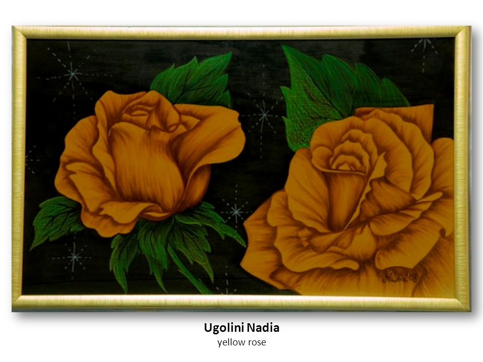 Ugolini Nadia yellow rose