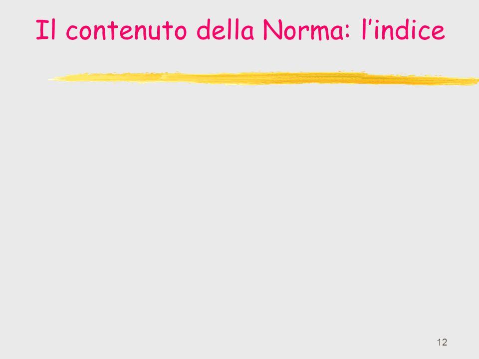 12 Il contenuto della Norma: lindice