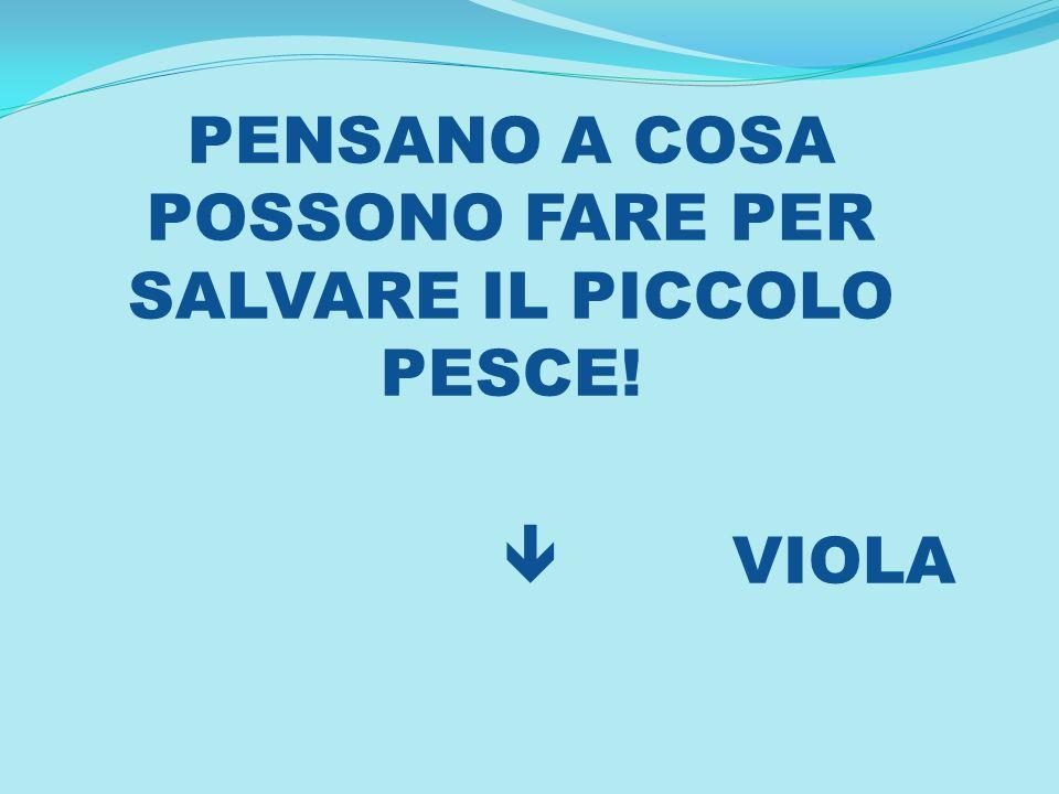 PENSANO A COSA POSSONO FARE PER SALVARE IL PICCOLO PESCE! VIOLA