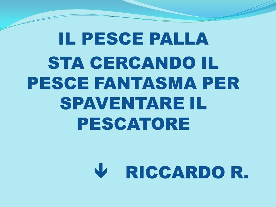 IL PESCE PALLA STA CERCANDO IL PESCE FANTASMA PER SPAVENTARE IL PESCATORE RICCARDO R.