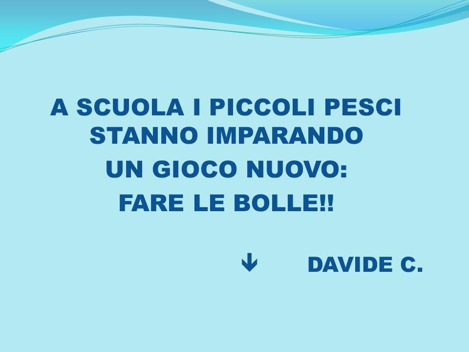 A SCUOLA I PICCOLI PESCI STANNO IMPARANDO UN GIOCO NUOVO: FARE LE BOLLE!! DAVIDE C.