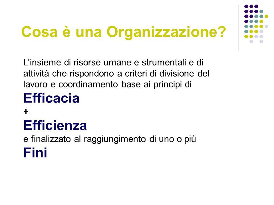Cosa è una Organizzazione.