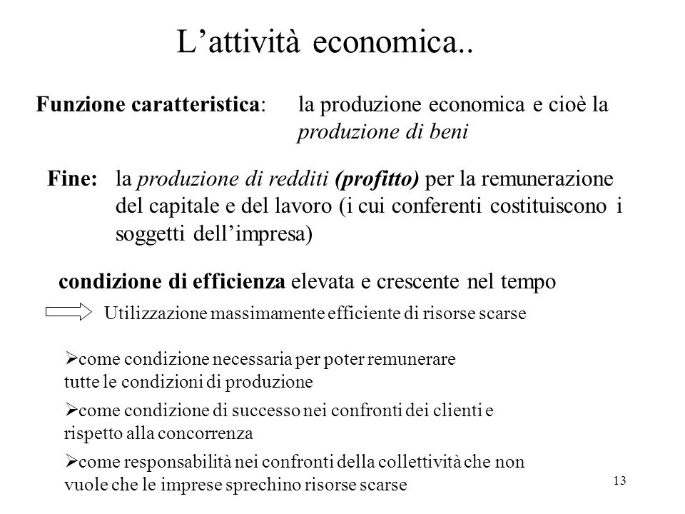 13 Lattività economica..
